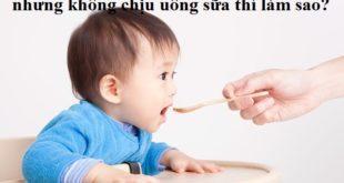 be-an-dam-khong-chiu-uong-sua